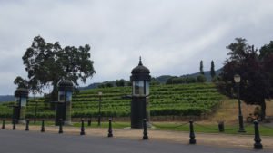 Book our SFO Car Service to visit the Napa Valley Wineries
